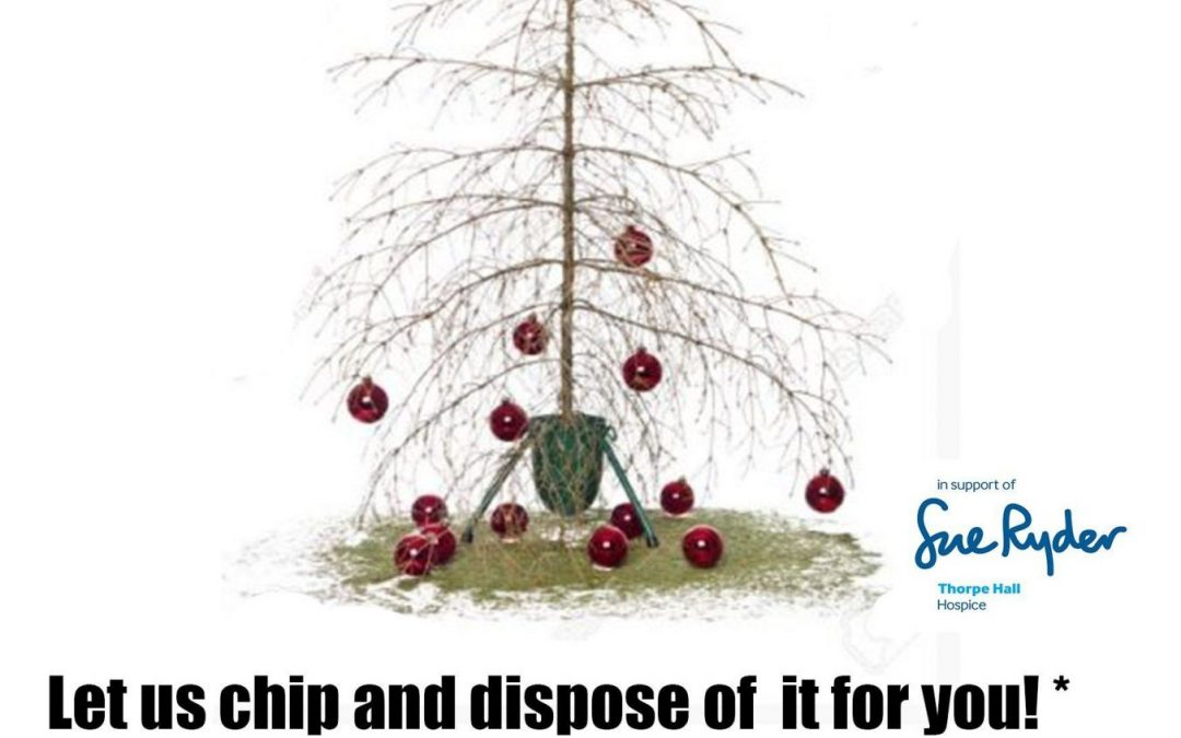 Christmas Tree Had it?