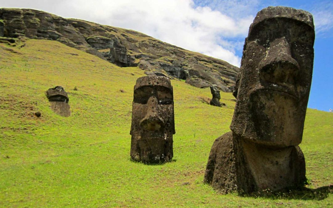 Talented Tree Surgeon branches out to Easter Island to help with re-forestation!