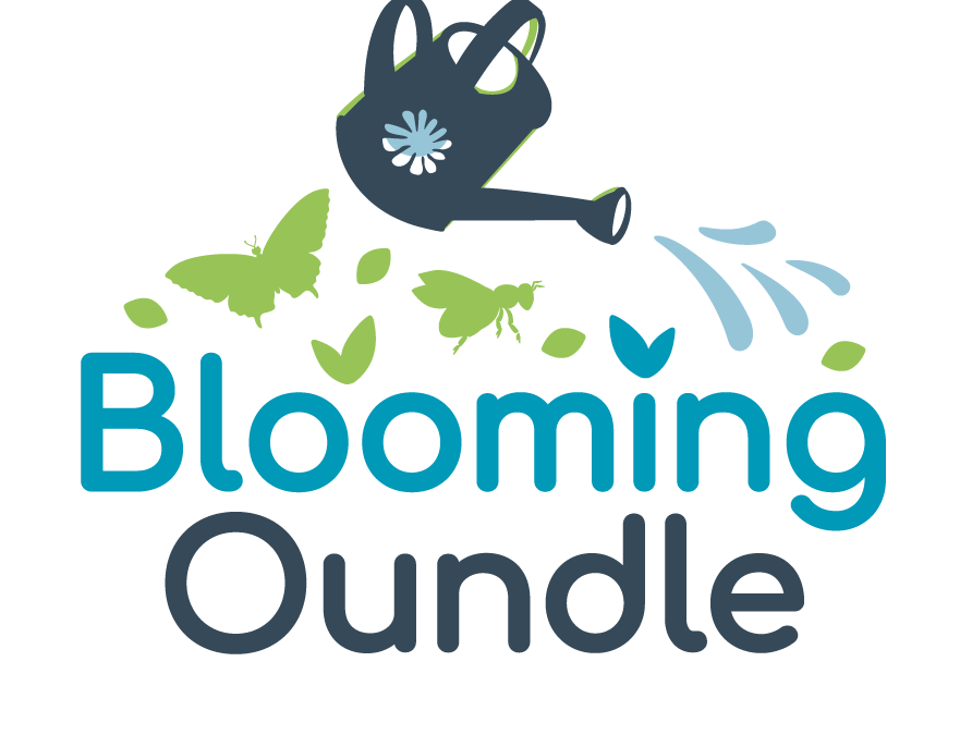 Local area shines as Blooming Oundle launches